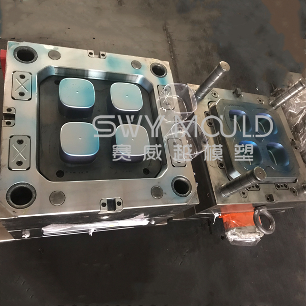 Biscuits Plastic Container Mould