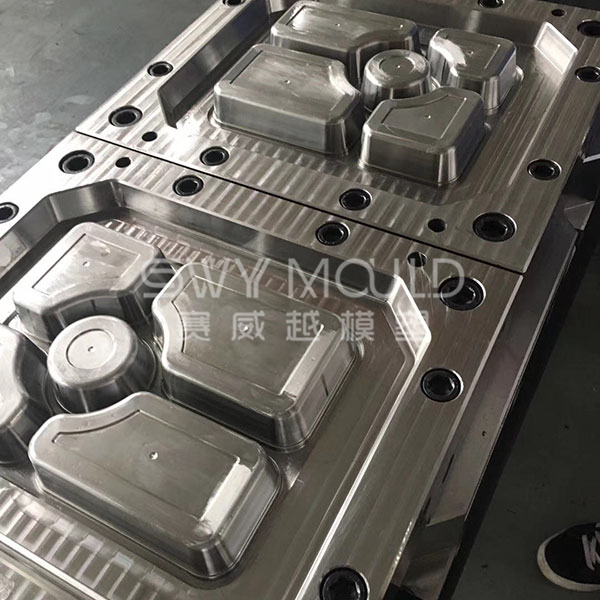 Plastic Divided Meal Box Mould