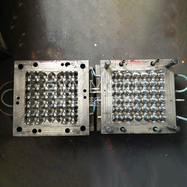 Plastic Egg Tray Mould