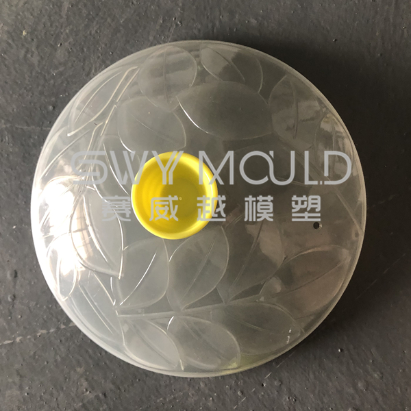 Plastic Dish Cover Mould