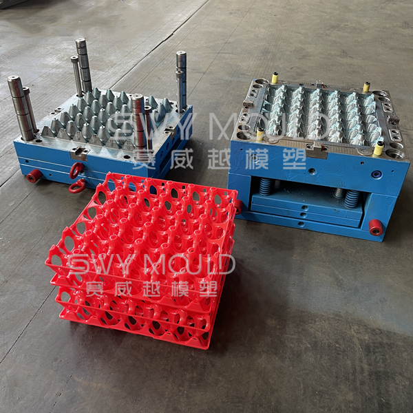 30 Cells Plastic Egg Tray Injection Mold